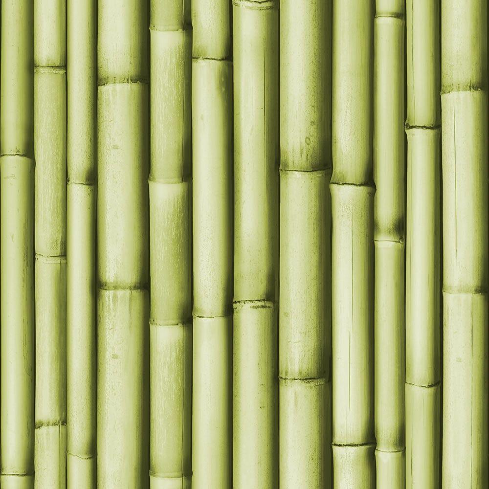 BambooF